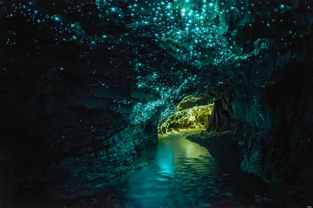 Cuevas Waitomo, Nueva Zelanda