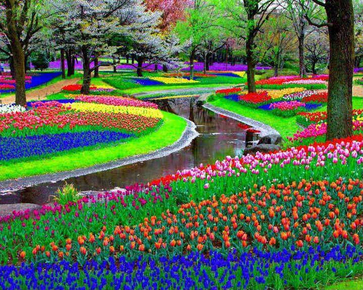Parque de Keukenhof , Lisse , Países Bajos